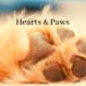 Heart & Paws Dog Walking